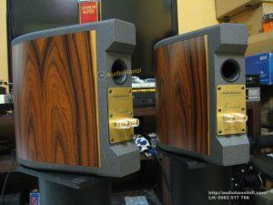loa AudioSolutions Guimbarde mat sau