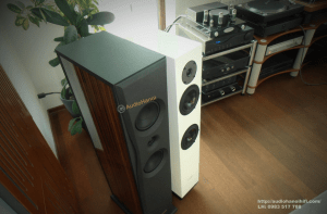 loa Audio Solutions Overture O203F chuan